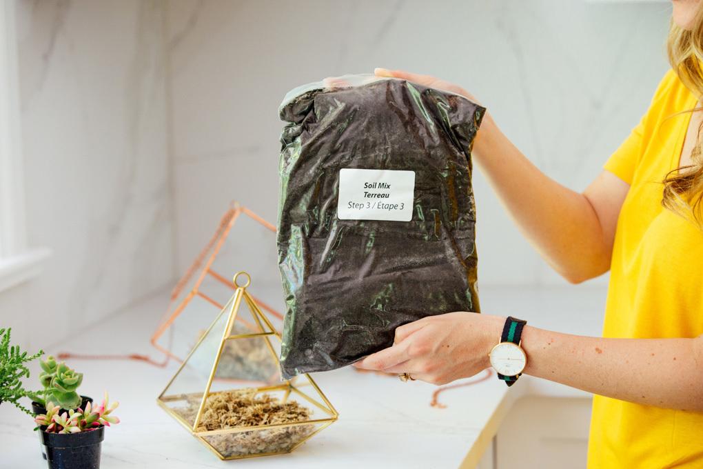 DIY terrarium with Homesense DIY Living Uncatagorized