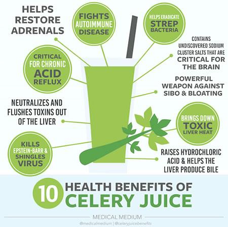 Celery Juice & Our 3 Favourite Juicers Food Recipes Uncatagorized